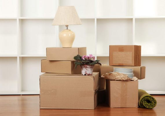 Removals and Packing Materials